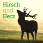 Hirsch und Herz