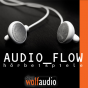 AUDIO_FLOW Podcast herunterladen