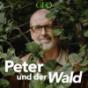 Peter und der Wald – ein GEO-Podcast Podcast Download