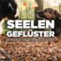 """Podcast Download - Folge Episode #3 - """"Angst beginnt im Kopf"""" online hören"""
