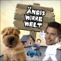 Ändis wirre Welt Podcast Download