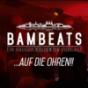 BAMBEATS - Podcast für elektronische Musik hosted by René Lehmann und MichiL. Podcast herunterladen