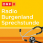 Radio Burgenland Sprechstunde Podcast Download