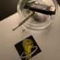 Lust auf Zorn Podcast herunterladen