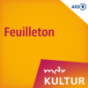 MDR KULTUR Das tägliche Feuilleton Podcast Download