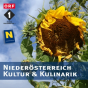 Niederösterreich Kultur & Kulinarik Podcast Download