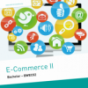 E-Commerce II (Bachelor)