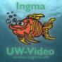 Ingma UW-Video Podcast Podcast herunterladen