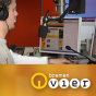 Radio Bremen - Best of Bremen Vier Podcast Download