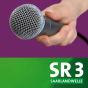 SR 3 - Künstlerinterviews Podcast Download