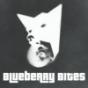 Blueberry Bites - Vegan im Hundepelz
