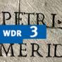 Migranten des Wortschatzes im WDR 3-Radio zum Mitnehmen Podcast herunterladen