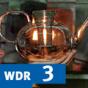 Design im Dasein - Dinde, die unser Leben prägen im WDR 3-Radio zum Mitnehmen Podcast Download