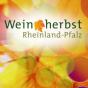 SWR - Weinherbst - Die besten Filme Podcast herunterladen