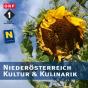 Niederösterreich Kultur & Kulinarik Podcast Download