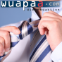 Der wuapaa Businesspeople Podcast Podcast Download