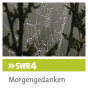 SWR4 BW Morgengedanken (Verkündigungssendung) Podcast Download