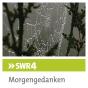 SWR4 BW Morgengedanken (Verkündigungssendung) Podcast herunterladen
