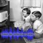 Stimmen der Kulturwissenschaften Podcast Download