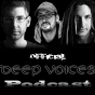 Podcast Download - Folge EP4 Official Deep Voices Podcast online hören