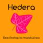 Hedera - Dein Einstieg ins Musikbusiness