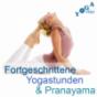 Fortgeschrittene Yogastunden und Pranayama