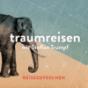 Traumreisen mit Steffen Trumpf