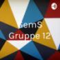 GemS Gruppe 12
