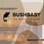 Bushbaby - von Berlin nach Afrika Podcast Download