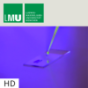 Lichtschalter aus dem molekularen Baukasten – HD Podcast Download