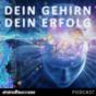 Dein Gehirn Dein Erfolg Podcast Podcast Download