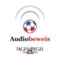 Audiobeweis - Der Tagesspiegel-Podcast zur WM Podcast Download