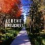 Lebenseinblick(e) Podcast Download