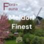 Podcast : Meldorf Finest