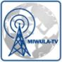 Podcast - Miniatur Wunderland Hamburg Podcast Download