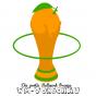 Die große WM-Vorschau | Ballwerk Orange Podcast herunterladen