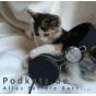 Podkatz.de Podcast Download