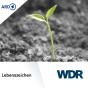 WDR 3 - Lebenszeichen Podcast Download