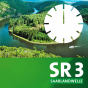 Podcast: SR 3 - Region am Mittag