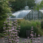 Botanischer Garten Basel - Audioguide Podcast Download