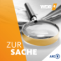 WDR 4 Zur Sache Podcast Download