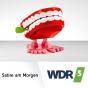 Der satirische Wochenrückblick von Peter Zudeick im WDR 5-Radio zum Mitnehmen Podcast Download