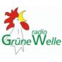 Radio Grüne Welle Podcast Download
