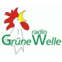 radio Grüne Welle - Gedanken Podcast Download