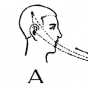 Semcast Podcast Download