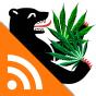 Die Stadt und das Gras | radioeins Podcast herunterladen