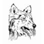 Hunde besser verstehen Podcast Download