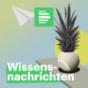 Wissensnachrichten - DRadio Wissen Podcast Download