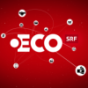 Konkurswelle rollt im ECO Podcast Download