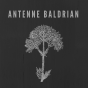 Antenne Baldrian Podcast Download
